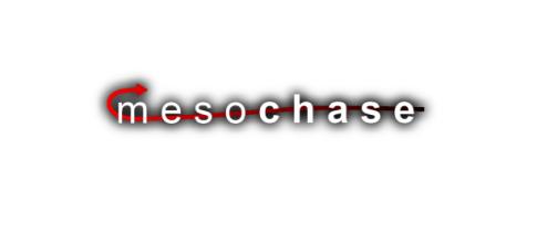 mesochase